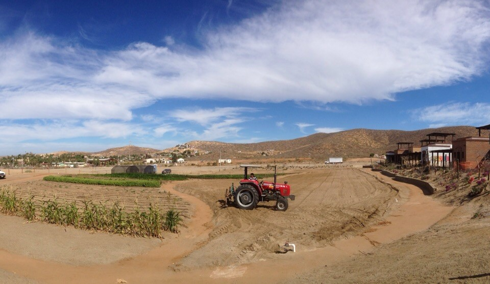 tractor working on Tres Santos garden community in Todos Santos, Mexico