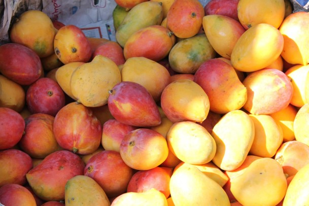 mango madness- Baja Brewing in Cabo- Tres Santo