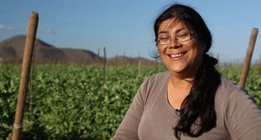 Elizabeth Ibarra Talks Organic Farming, Baja Produce, and More